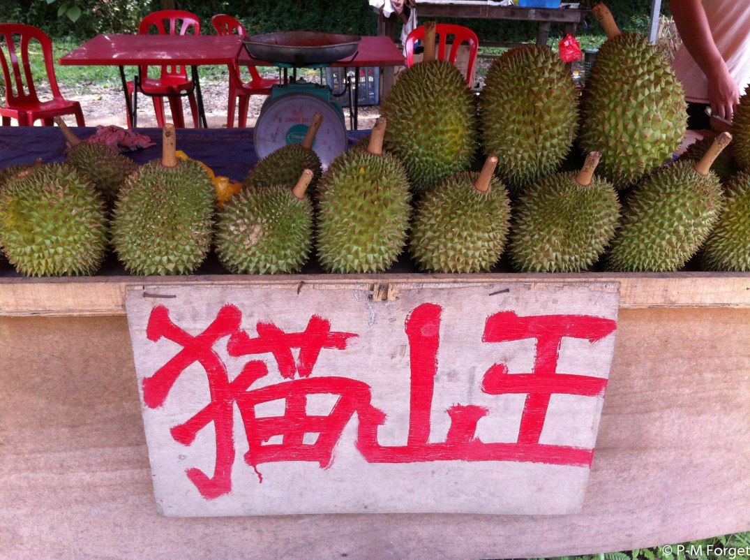 durian for sale_PMF.jpg