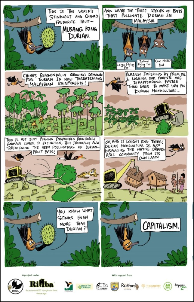 durian and flying fox comic_web