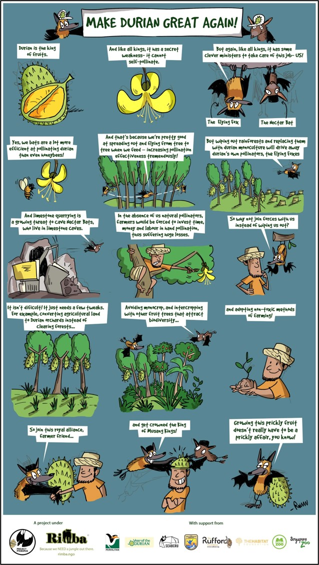 durian farming infographic_latest_110320