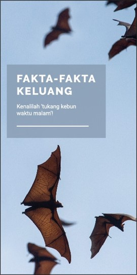 Fakta-fakta Keluang Factsheet_web_outlined