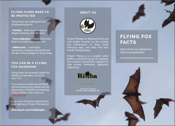 Flying Fox Facts Brochure_web_outlined