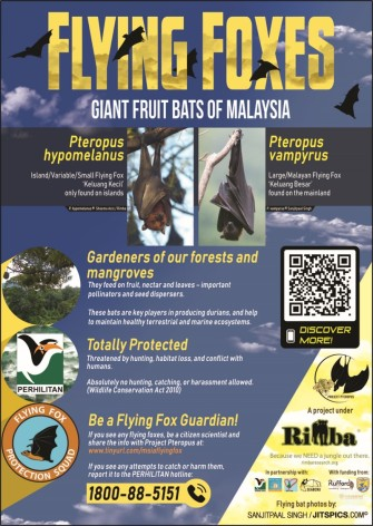 Flying Foxes of Msia poster_2019_web